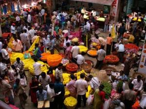 Franziska w Bangalore. Szukając własnego M