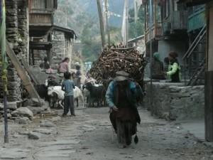 Piekarnia w Nepalu - wywiad z pomysłodawcami akcji