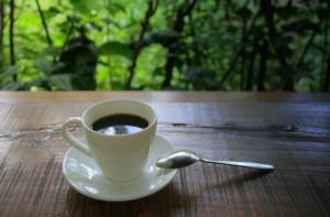 Najlepsza kawa pod słońcem rośnie na Bali