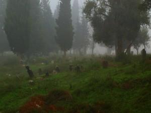 Cmentarz w Turcji
