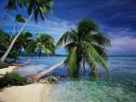 Jak zabezpieczyć się przed chorobami tropikalnymi w podróży